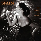 She Haunts My Dreams Lyrics Spain