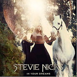 In Your Dreams Lyrics Stevie Nicks