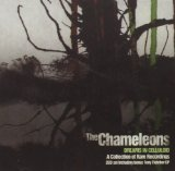 Dreams In Celluloid Lyrics The Chameleons UK