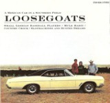 A Mexican Car In a Southern Field Lyrics Loosegoats