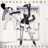 Birds Of Prey Lyrics Godley And Creme
