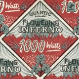 1000 Watts Lyrics Quantic & Flowering Inferno
