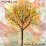 Bottle the Sun Lyrics Waido Experience