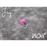 Noir Lyrics Jay