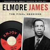 The Final Sessions Lyrics Elmore James