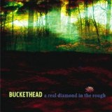 A Real Diamond In The Rough Lyrics Buckethead