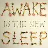 Awake Is The New Sleep Lyrics Ben Lee