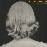 The Mistress Lyrics Yellow Ostrich
