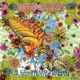 The Illustrated Garden Lyrics Radar Brothers