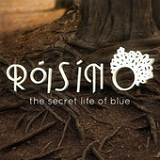 The Secret Life of Blue Lyrics Róisín O