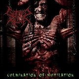 Culmination of Mutilation Lyrics Gutted Alive