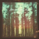 Tell Where I Lie Lyrics Fossil Collective