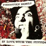 In Love With The System Lyrics Forgotten Rebels