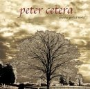 Another Perfect World Lyrics Cetera Peter