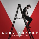 Nothing Left to Fear Lyrics Andy Cherry