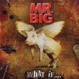 What If... Lyrics Mr. Big