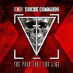 The Pain That You Like Lyrics Suicide Commando