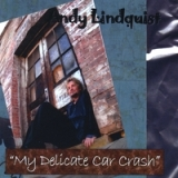 My Delicate Car Crash Lyrics Andy Lindquist
