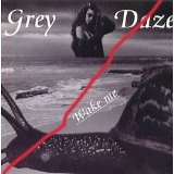 Wake Me Lyrics Grey Daze