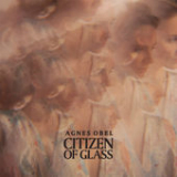 Citizen of Glass Lyrics Agnes Obel