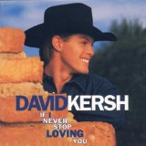 If I Never Stop Loving You Lyrics Kersh David