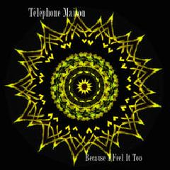 B1f1t Lyrics Telephone Maison