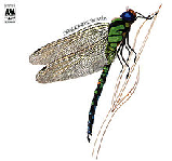 Dragonfly Lyrics Strawbs
