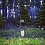 Daisy Lyrics Brand New