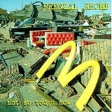 Not So Tough Now Lyrics Frenzal Rhomb