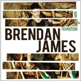 Hope In Transition Lyrics Brendan James