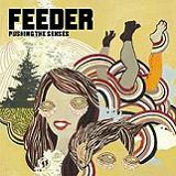 Pushing the Senses Lyrics Feeder