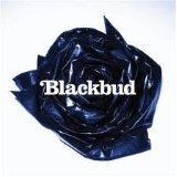 Blackbud Lyrics Blackbud