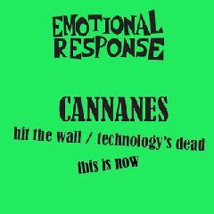 Hit the Wall Lyrics The Cannanes
