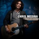 What Are Words Lyrics Chris Medina
