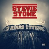 2 Birds 1 Stone Lyrics Stevie Stone