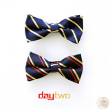 Day Two (Mixtape) Lyrics Young Dro