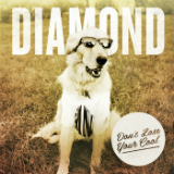 Don't Lose Your Cool (EP) Lyrics Diamond Youth