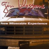 New Miserable Experience Lyrics Gin Blossoms