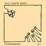 Never Mind The Ballots Lyrics Chumbawamba