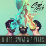 Blood, Sweat & 3 Years Lyrics Cash Cash