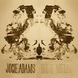 Bed Of Notions Lyrics Jocie Adams