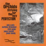 Striving For The Lazy Perfection Lyrics The Orchids