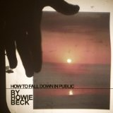 How To Fall Down In Public Lyrics Howie Beck