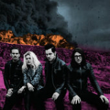 Dodge and Burn Lyrics The Dead Weather