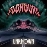 Unknown EP Lyrics Pleasure