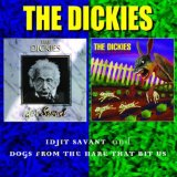Idjit Savant Lyrics Dickies