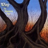 The Shimmering Hour Lyrics Wisp