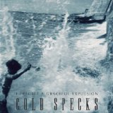 I Predict a Graceful Expulsion Lyrics Cold Specks
