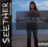 Disclaimer Lyrics Seether