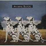 Animal Logic Lyrics Animal Logic